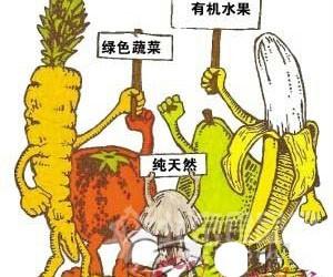 """缩短""""食物链""""有机食品直销:从田间到餐桌【图】"""