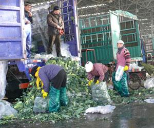 农产品物流环节滞后危及食品安全